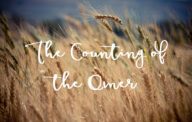 Counting-the-Omer
